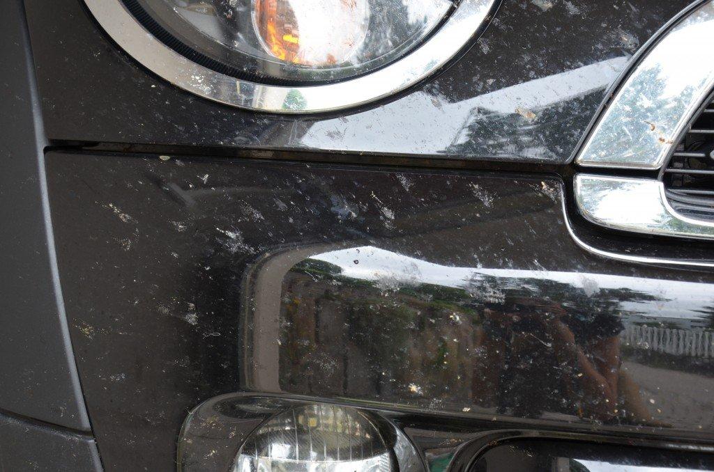Insekten Entfernen Am Auto Onemorelapcom Der Schnellste