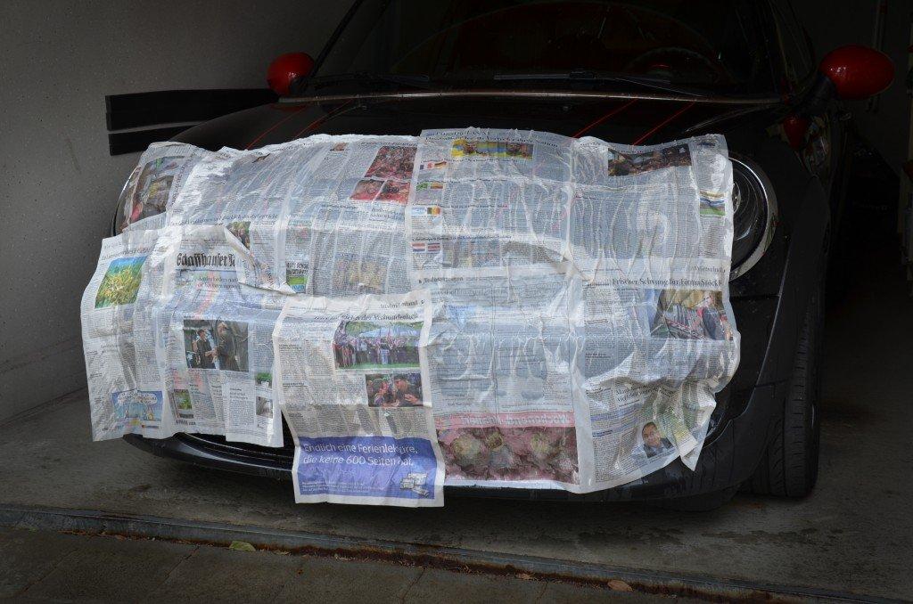 Mücken entfernen Auto